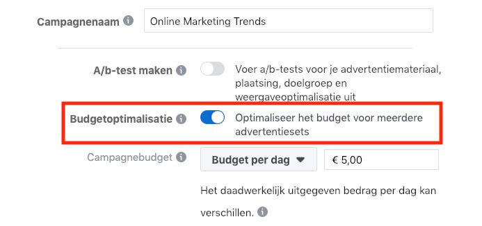 Budget Optimalisatie Facebook
