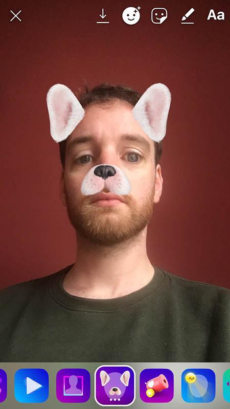 Instagram stories Puppy filter